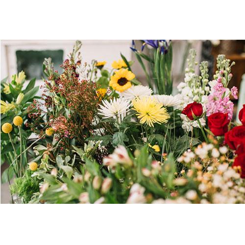 Írisz Virág Ajándék - Mándok